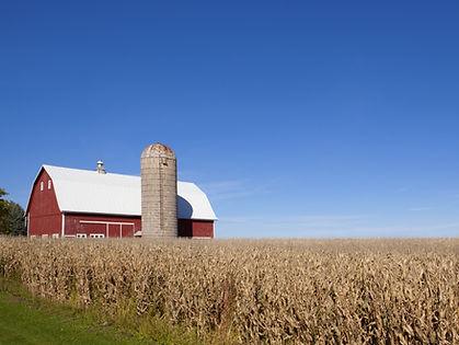 Scenic Farm Land - Minnesota.jpeg