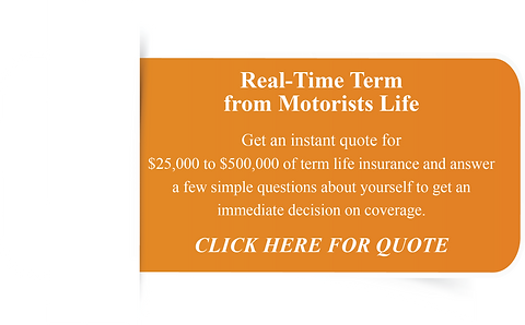Life Insurance Banner.png