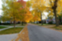autumn-neighborhood.jpg