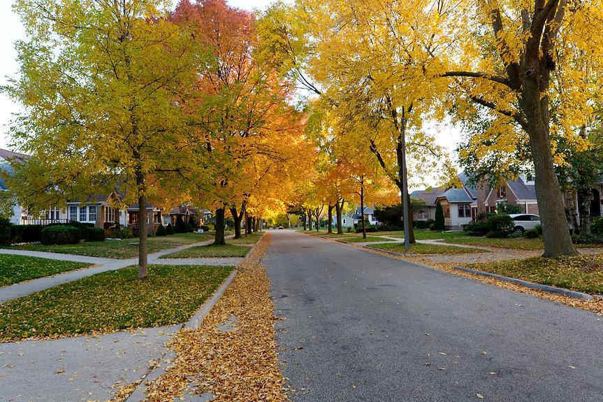 autumn-neighborhood.jpg