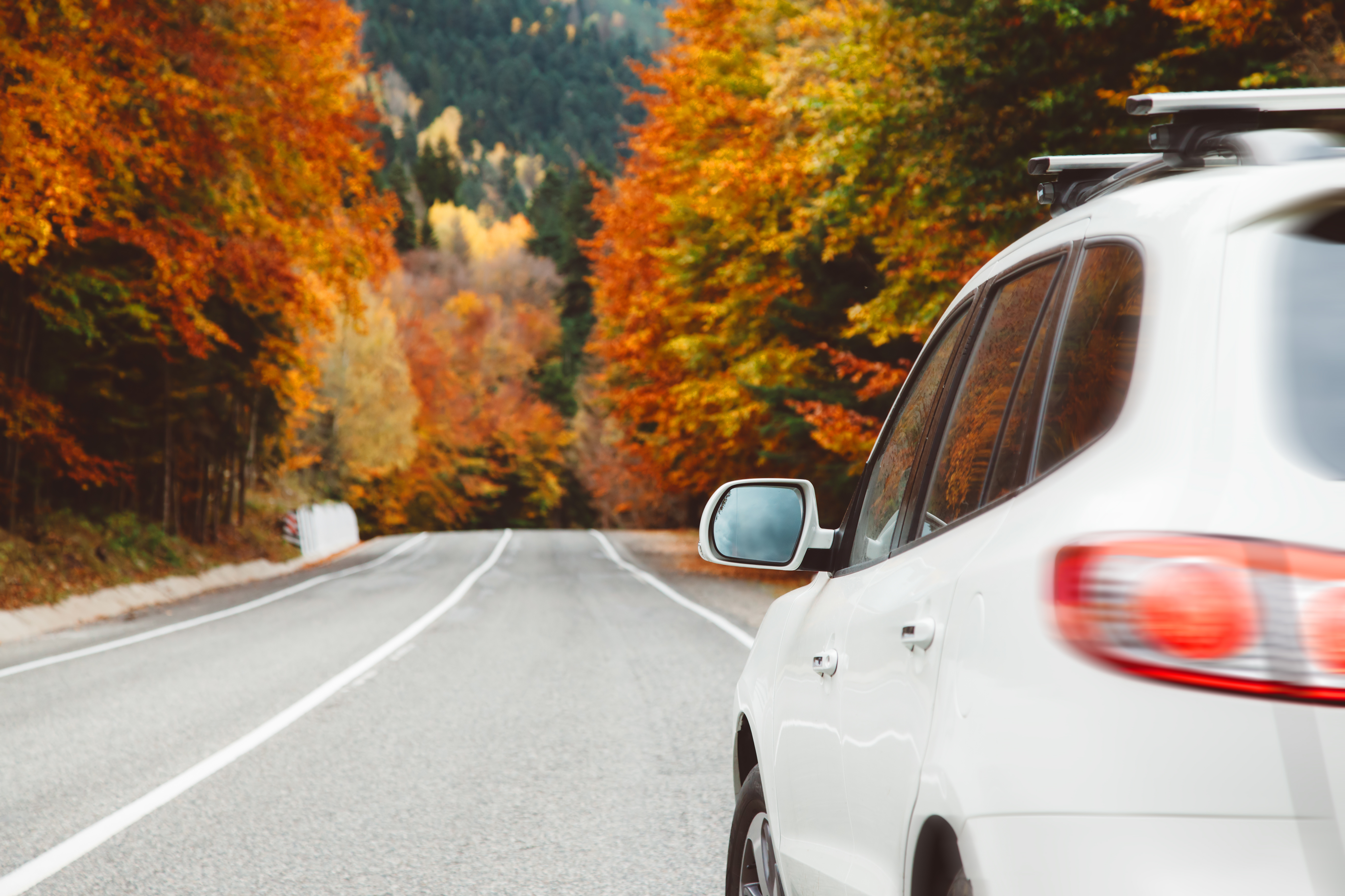 white_car_road_autumn