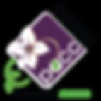 PACC-Logo-.png
