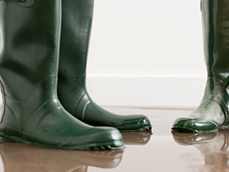 We've said this before but here it is again about flood insurance...