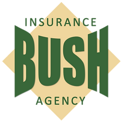 Bush Logo New.png