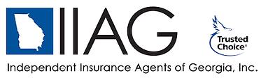 iiag_logo.png