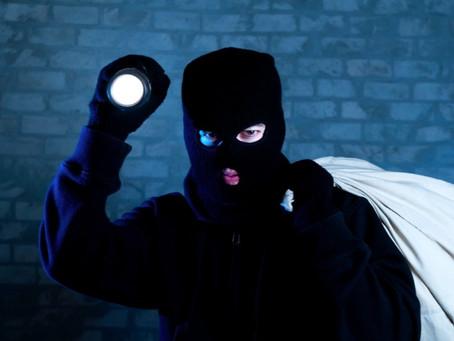 7 Things Burglars Hate