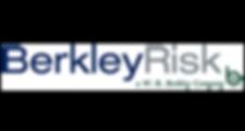 Berkley Risk Logo