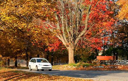 white_car_autumn_road.jpeg
