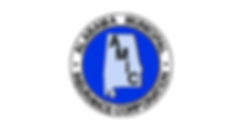 AMIC Logo