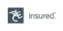 ACE Insurance Logo