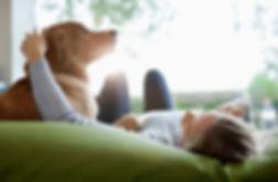 Pet Ins_166273107.jpg