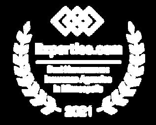mn_minneapolis_homeowners-insurance_2021
