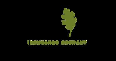 Southern Oak Insuranc eLogo