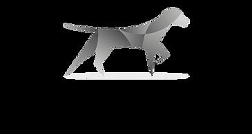 SteadPoint Logo