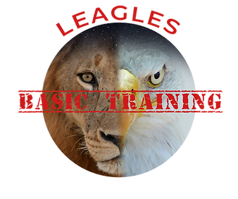 Basic trainng logo.png