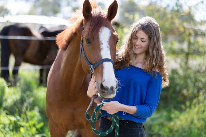 Développer ses compétences managériales grâce aux chevaux avec ELEGIA FORMATION et HORSEDEV