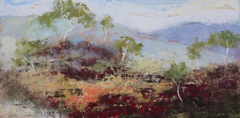 Kimberley Gorge 40cm x 30cm