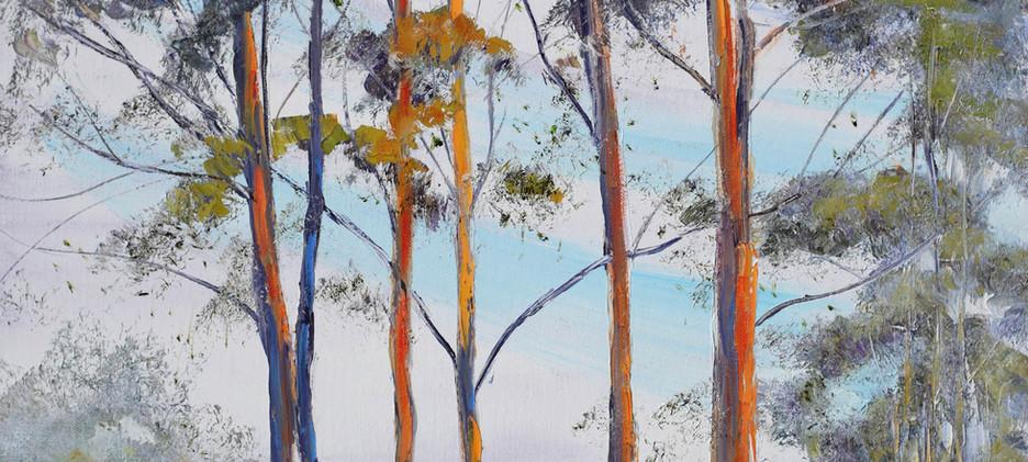 Karri Trees 46cm x 91cm