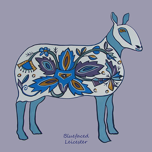 blue faced leicester sheep card