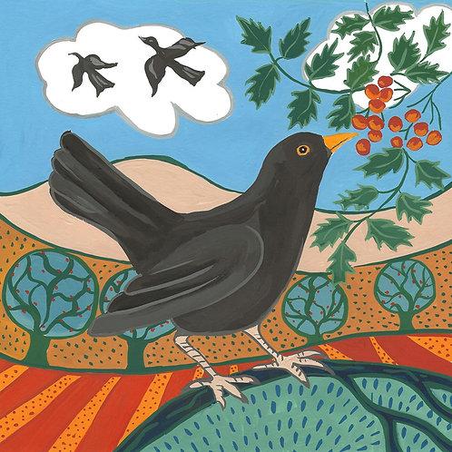 Coaster-card - Blackbird