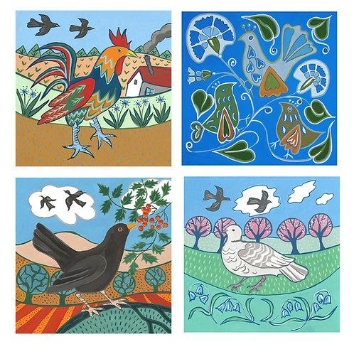 bird greetings card selection