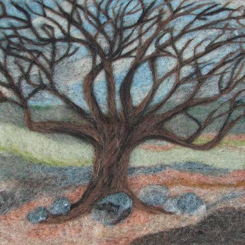 Card - Old Oak