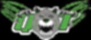 RoboTigers QT Tiger Logo Black Backgroun