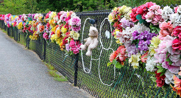 remembering a tragic accident with a ted