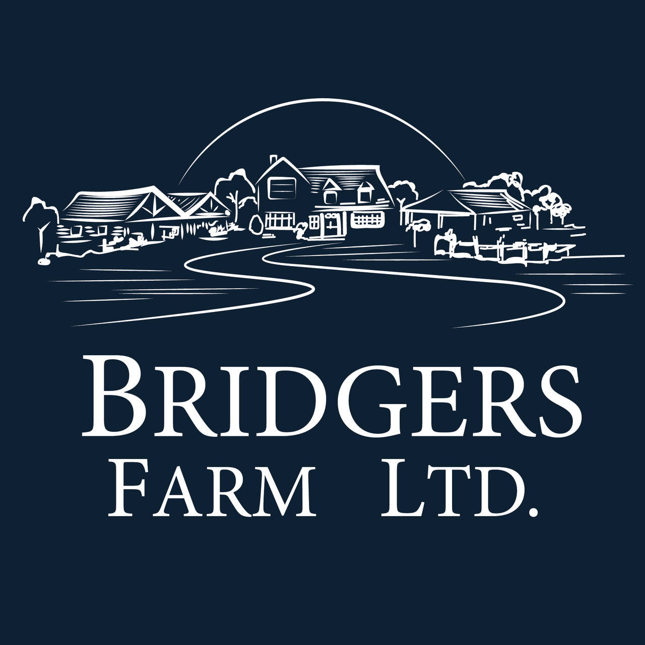 Bridgers: Logo Refresh (Design)
