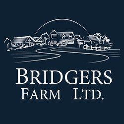 Bridgers: Logo Refresh (Design)