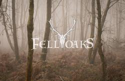 FELL OAKS - Logo Design near Crawley