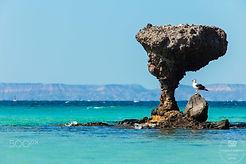 playa balandra6.jpg