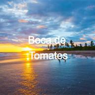 Boca de Tomates