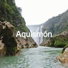 AQUISMON