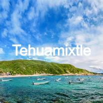 Tehuamixtle
