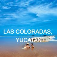 Las Coloradas, YUC