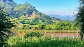 [Stellenbosch] Wine and diamonds at Delaire Graff Estate Lodges, a Relais & Châteaux property