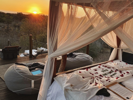 [Skukuza] I spent my birthday in a treehouse at Lion Sands Game Reserve, and it was magic