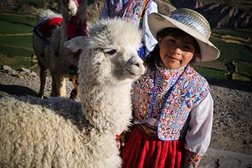 Meisje met lama in Cusco