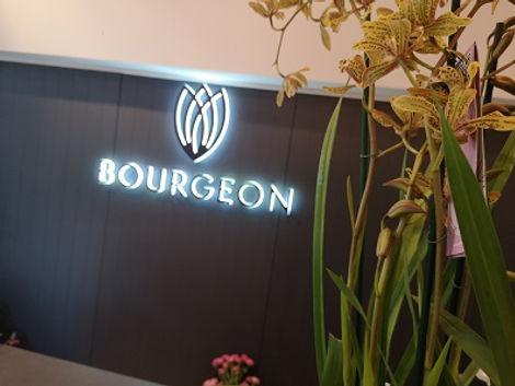 Bourgeon.jpg