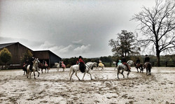 Horse Show Le Tulipier