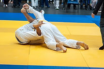 Judo Combat - ko.jpg