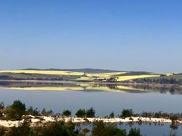 Carol's magic picture looking across Theowaterskloof dam onto the Canola fields.