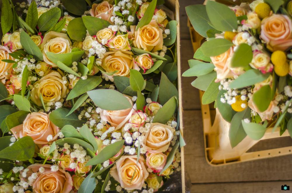 Hochzeit Josefine & Gareth 005