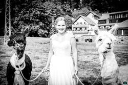 Hochzeit Karolin & Stefan (60 von 97)