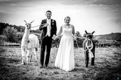Hochzeit Karolin & Stefan (59 von 97)