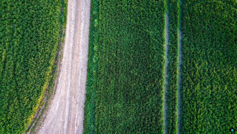 Feldwege aus der Luft