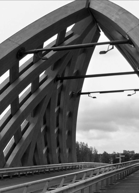 Accoya Wood bridge in Holland