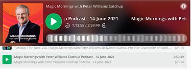 Screen Shot 2021-07-17 at 4.02.01 PM.png