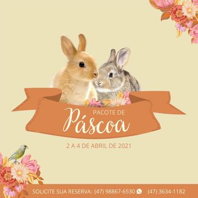 Pacote Páscoa Hotel Stelter 2021.webp